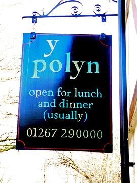 Y Polyn Sign