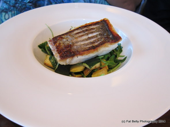 Picture of the Catch of the Day - Hake