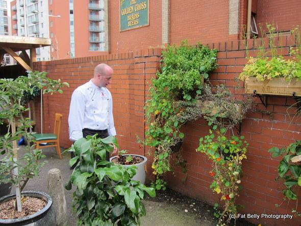 Corpulent Capers: Zest Garden